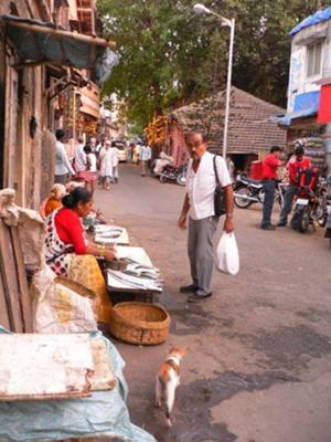 Buying Fresh Fish In Chimbai